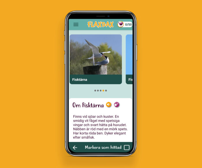 Fågelskådning app android ios hybrid
