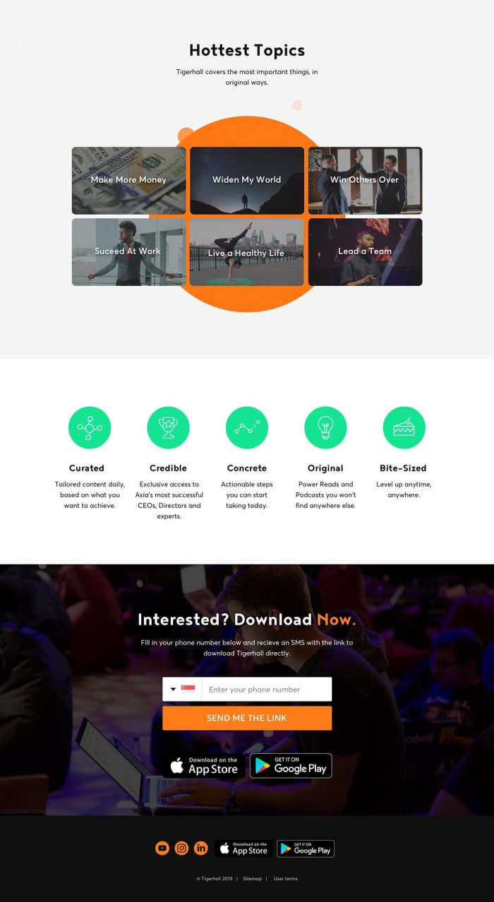 tigerhall web design